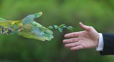 Limpeza Profissional - Ecologica